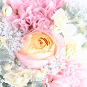 母の日に贈ると喜ばれる「カーネーション以外」の花は?